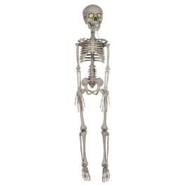 Esqueleto con luz led