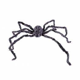 Araña peluda