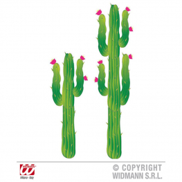 Set 2 Cactus 180 Cm. Y 120 Cm.