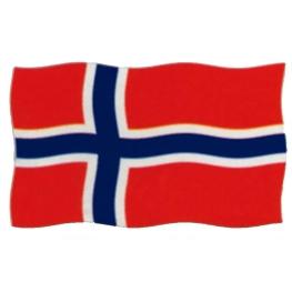 Bandera Noruega 200x120 cm