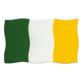 Bandera Irlanda 200x120 cm