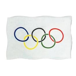 Bandera Olímpica 200x120 cm