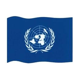 Bandera ONU 100x65 cm