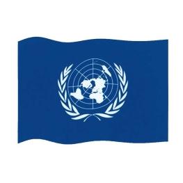 Bandera ONU 150x100 cm