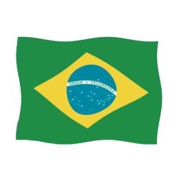 Bandera Brasil 150x100 cm