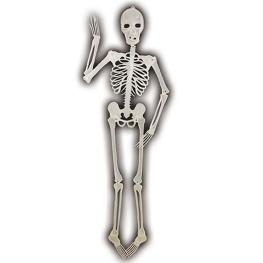 Esqueleto que brilla en la oscuridad