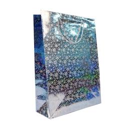 Bolsa holográfica plata