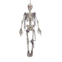 Esqueleto colgado con luz